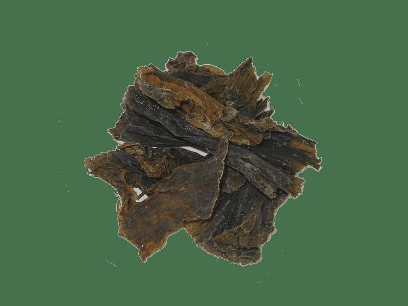 alga-kombu-rapida