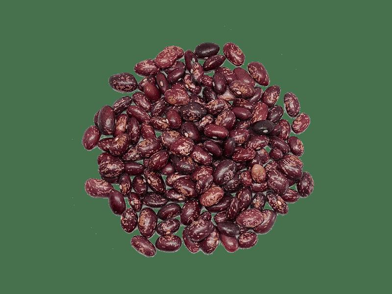 alubia-tolosana-palmea