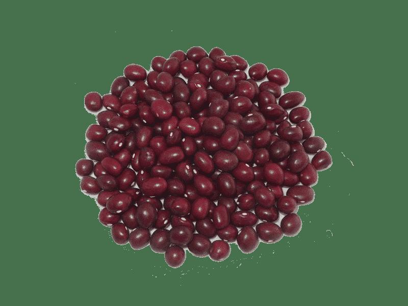 alubia-tolosana-roja