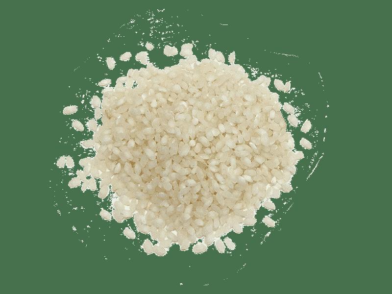 arroz-albufera-3