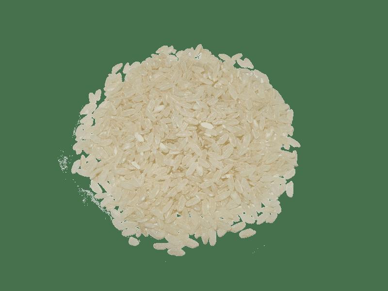 arroz-bahia-eco
