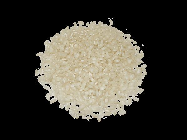 arroz marisma