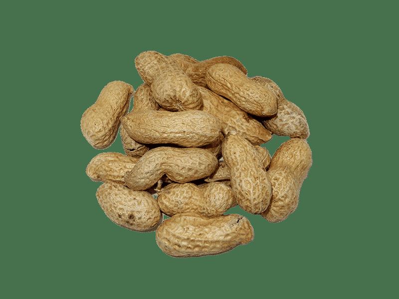 cacahuete-con-cascara