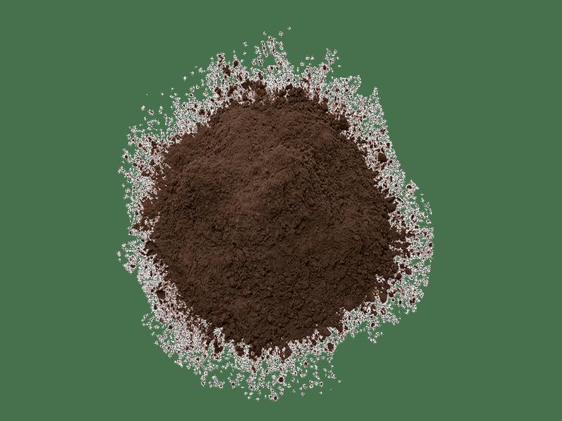 cacao-holandes