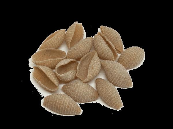 conchas de trigo kamut