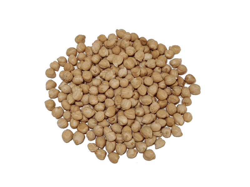 garbanzo-pedrosillano-1