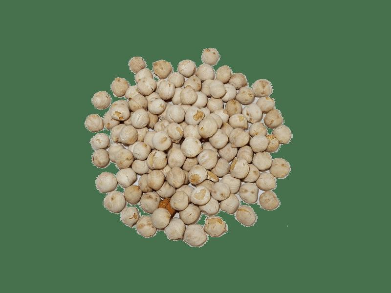 garbanzo-tostado-1