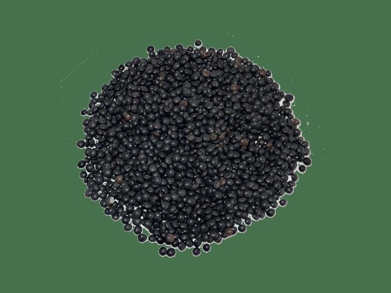 lenteja-caviar