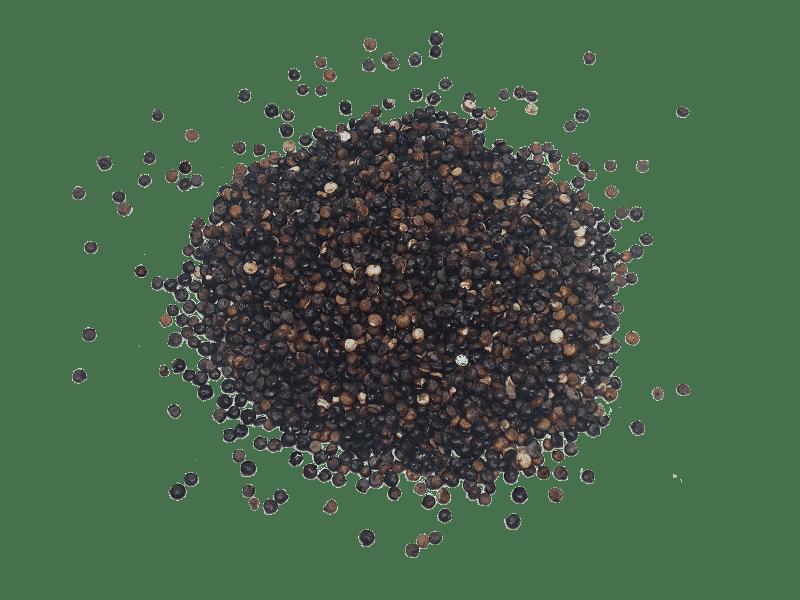 quinoa negra 21.15.35