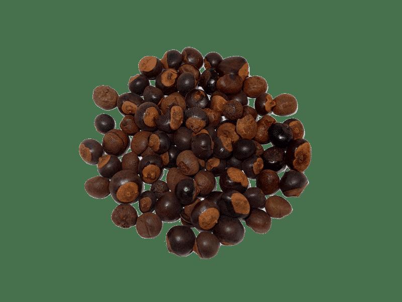 semillas-de-guarana